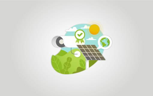 Noticia -Alphanet: garantia de qualitat i respecte pel medi ambient